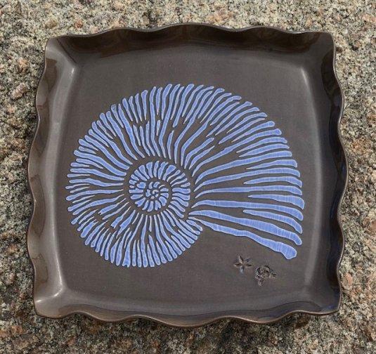 Nautilus Tray