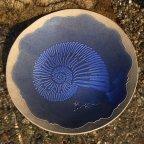 Nautilus Platter